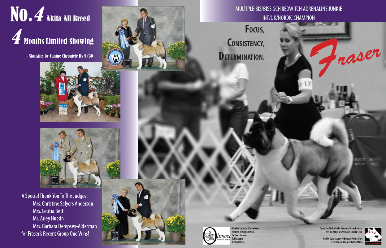 Working Dog Digest (Dec 2013)