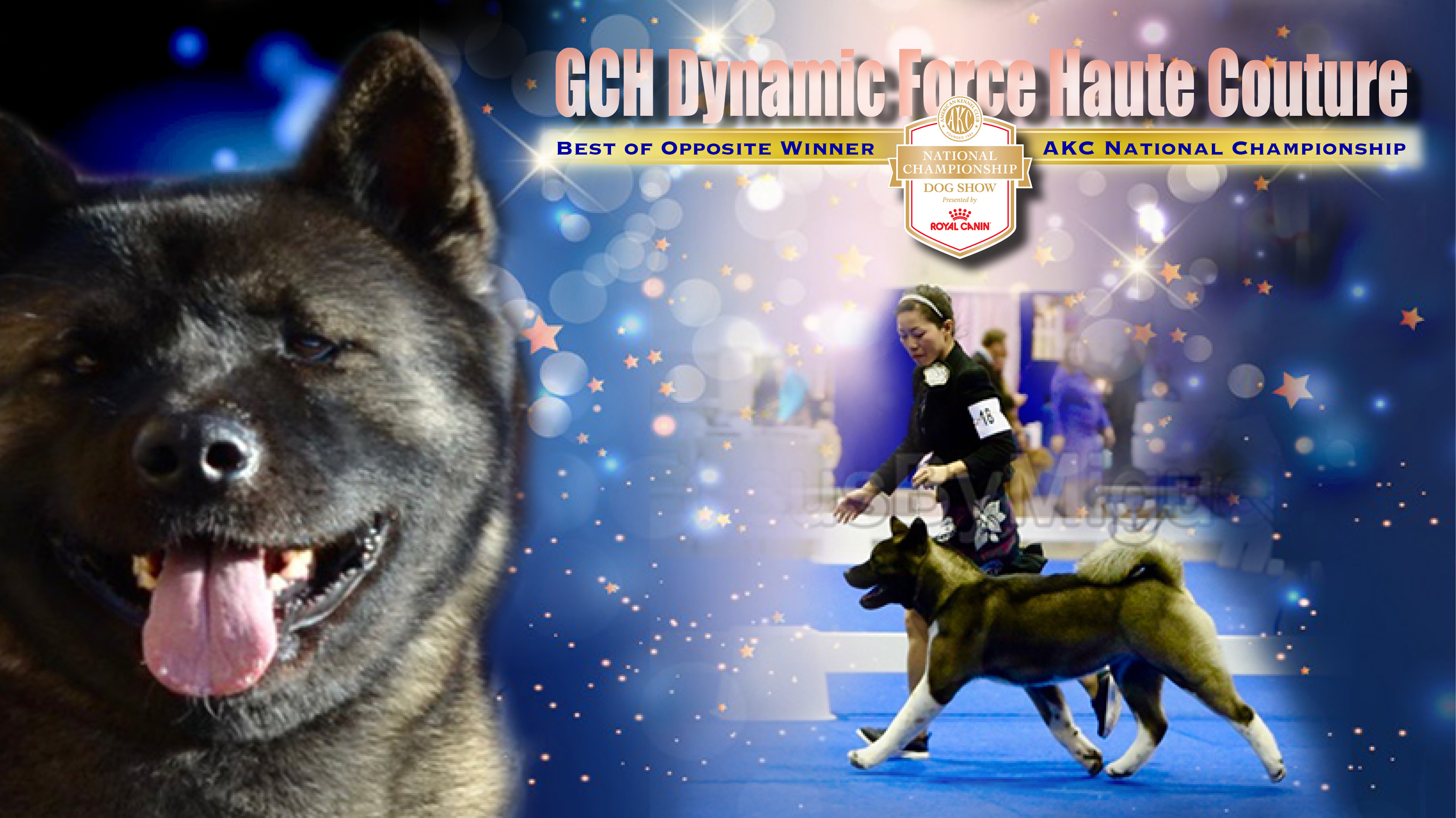 Couture GCH Announcement