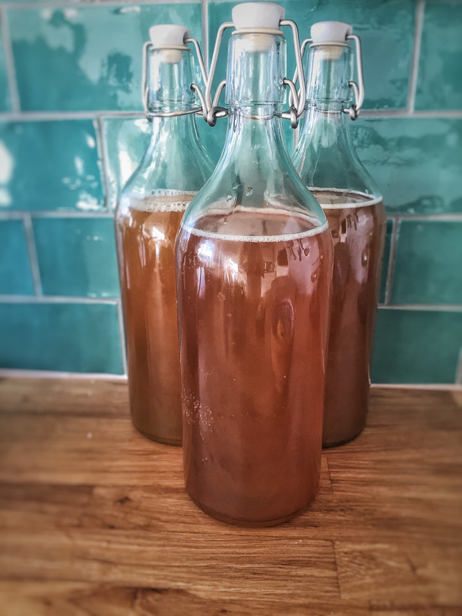 Kombucha... All your questions answered!