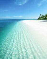maldives beach.jpg