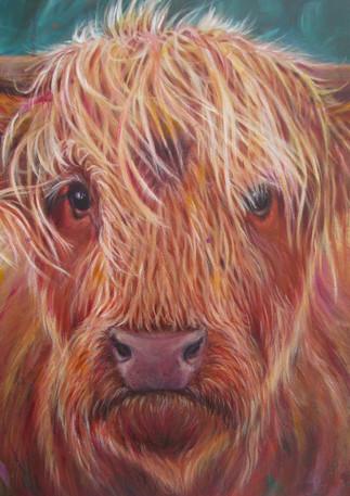 Heilan Coo - Original Art by Lesley McVicar