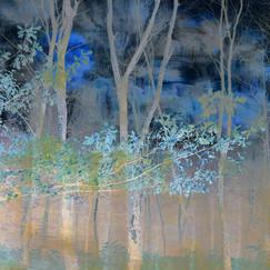 14 BLUE MOON by Nicola Bolton
