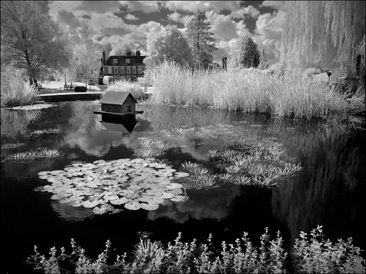 RESIDENCES AT THE POND by Mick Dudley