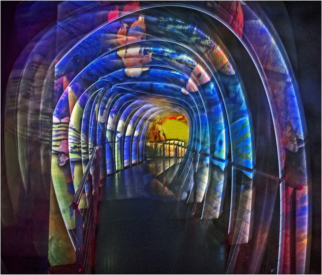 GROUP 1 17 THERE IS LIGHT AT THE END OF THE TUNNEL by Jacky Bunyan