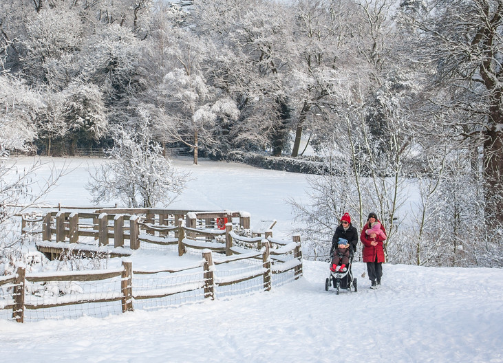16 STROLLING IN THE SNOW by Roger Wates
