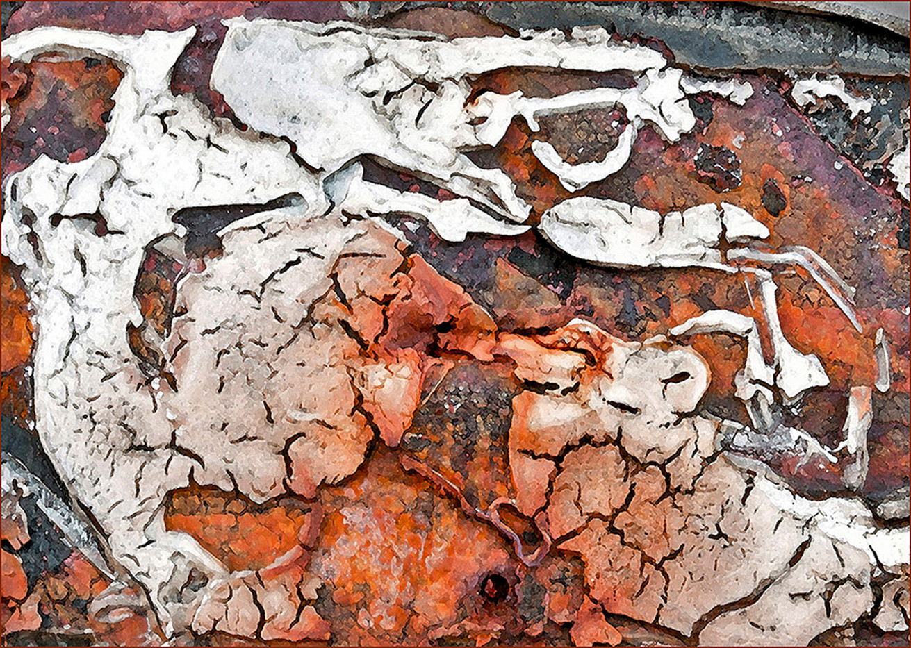 Group 1 18 SKELETAL IMPRESSIONS IN RUST by Mike Shave