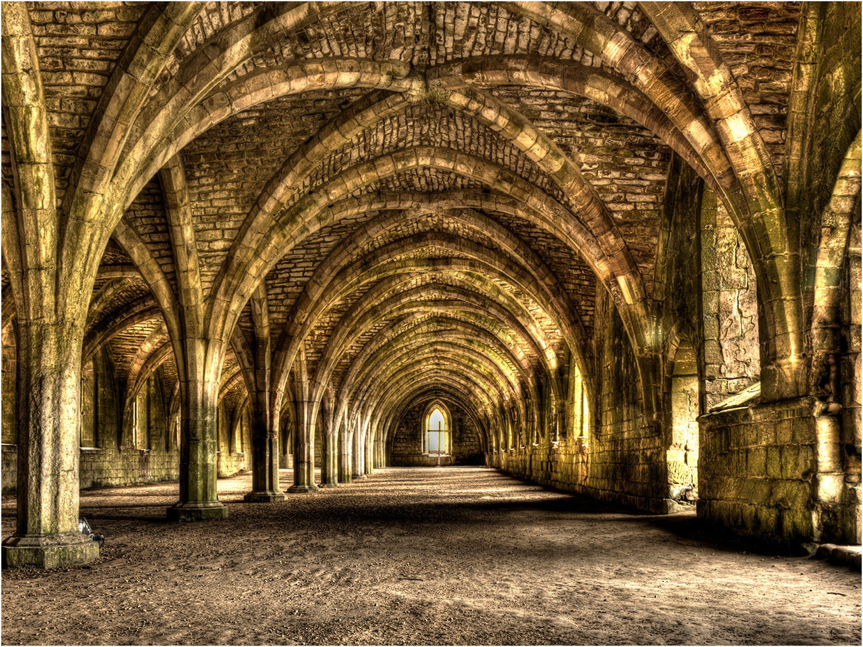 GROUP 1 17 CELLARIUM FOUNTAINS ABBEY by Lol Beacham
