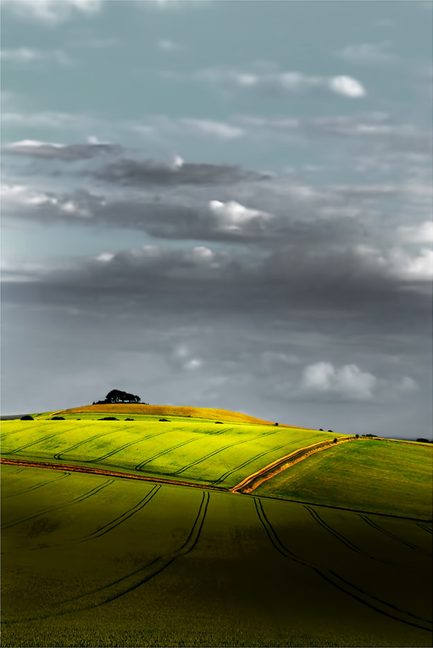 18 WILTSHIRE STROLL by Jenny Clark