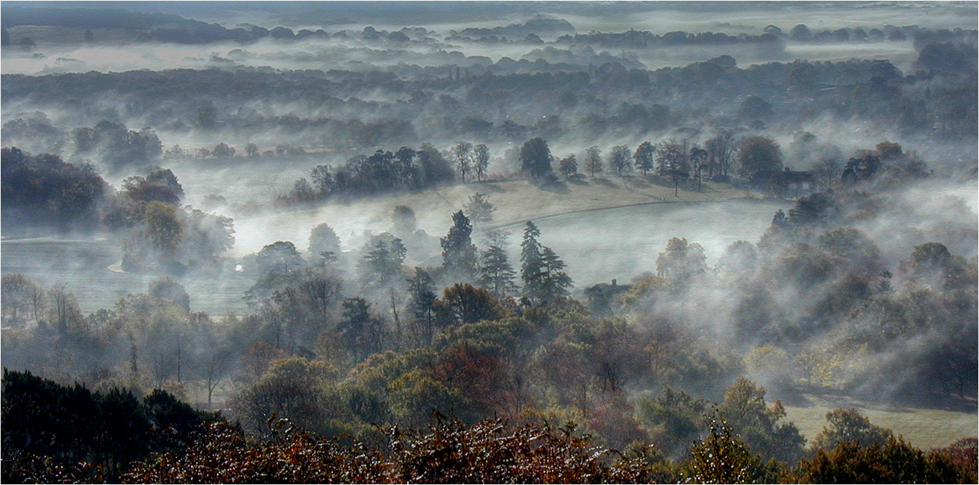19 MORNING MIST by Dave Brooker