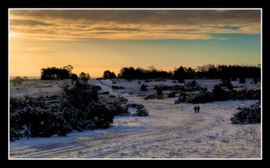 19 WINTER WALK TO CROWS NEST CLUMP, ASHDOWN FOREST by Dave Brooker