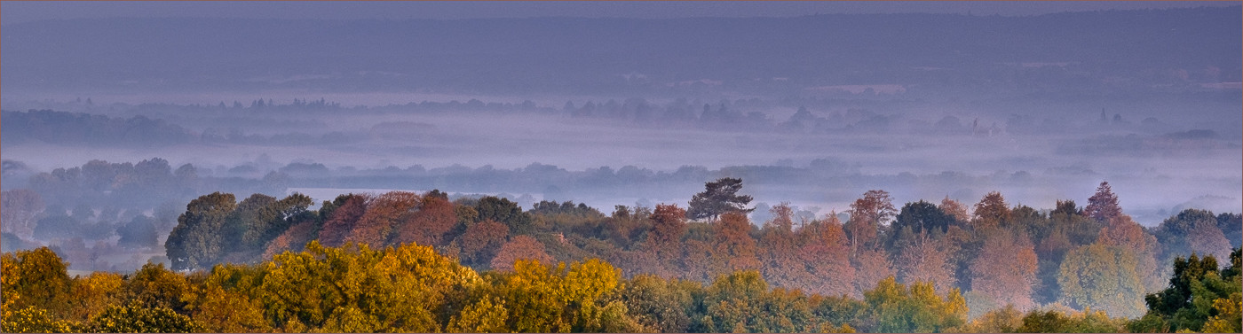 16 MORNING VIEW OF THE NORTH DOWNS FROM BIDBOROUGH RIDGE by Colin  Hurley