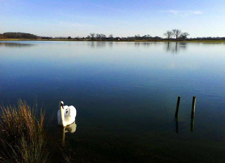18 STILL WATERS RUN DEEP by Norman Cochrane