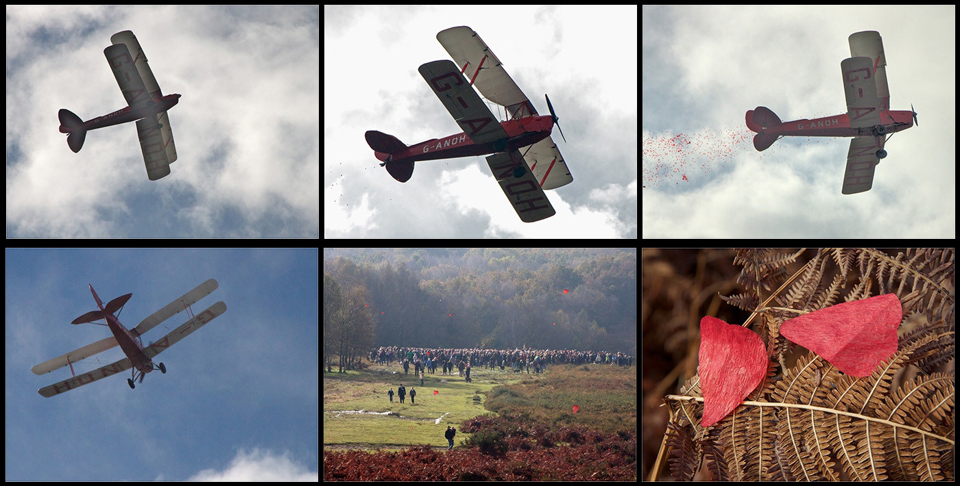 16 REMEMBRANCE AT THE AIRMANS GRAVE ASHDOWN FOREST by Dave Brooker
