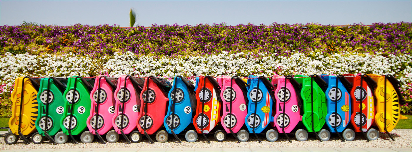 GROUP 1 19 BABY BUGGIES by Dave Brooker
