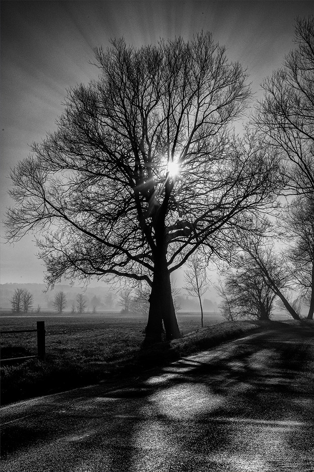 18 A MISTY DAY IN KENT by Philip Easom