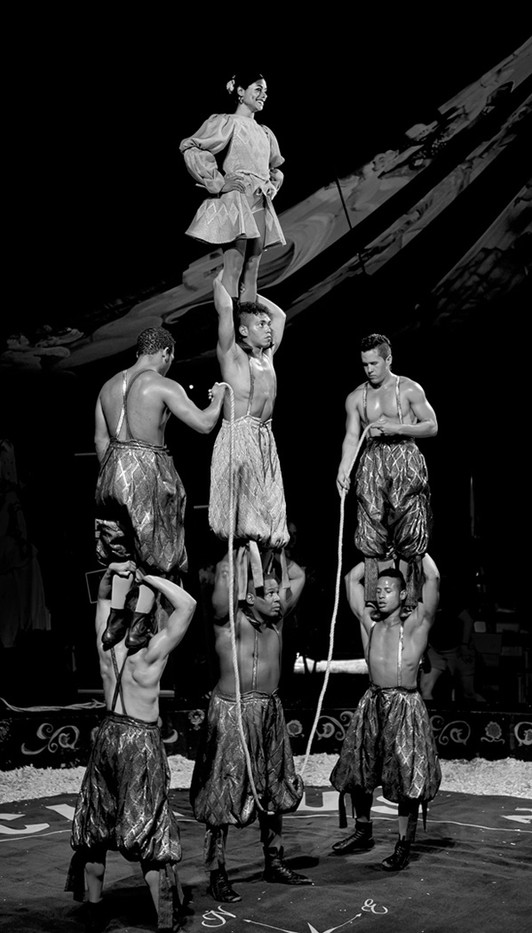 16 THE ACROBATS by Terry Day