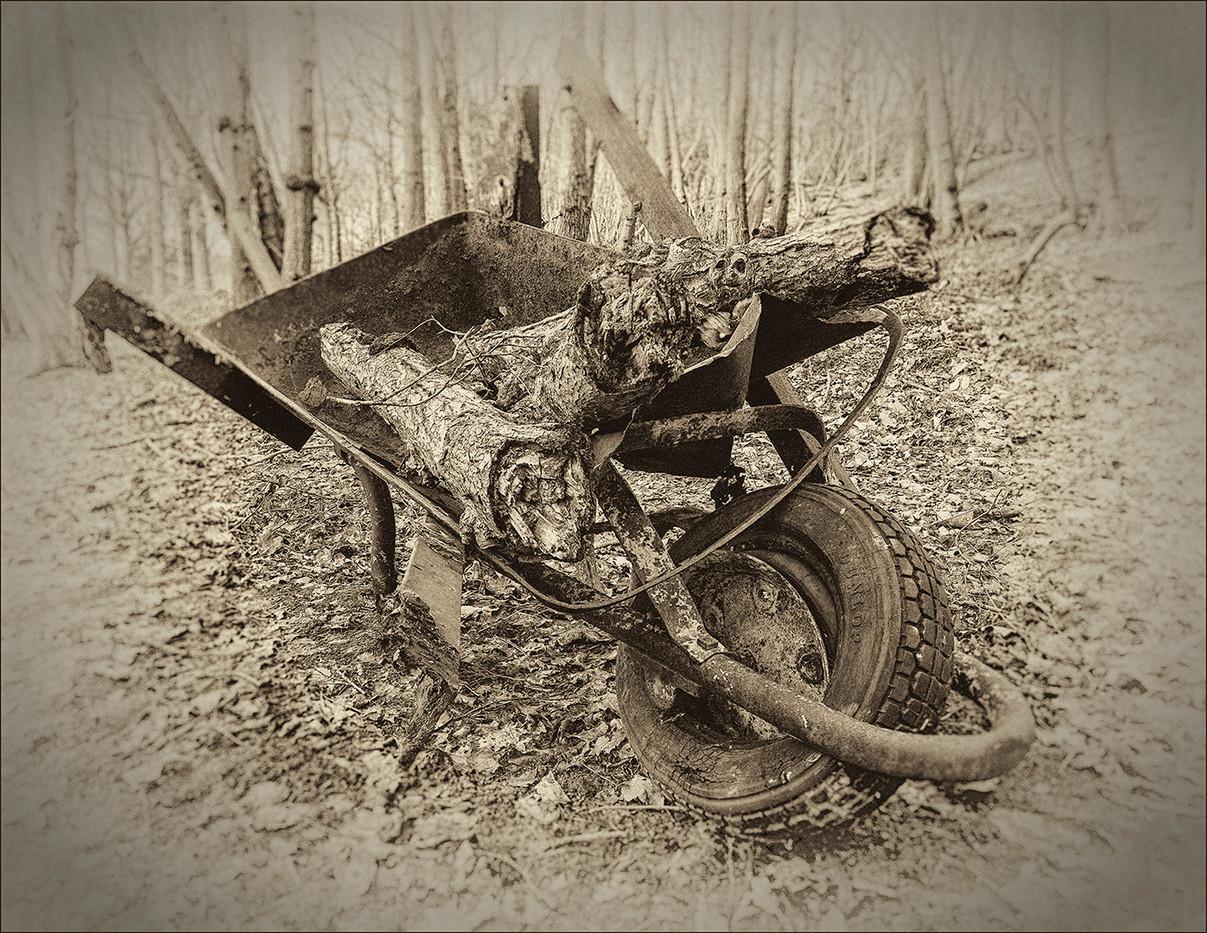 16 THE OLD WHEELBARROW by Steve Oakes