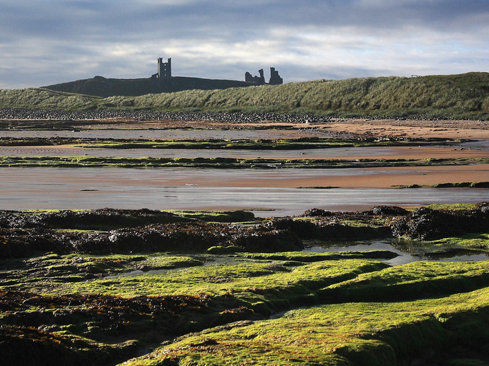 14 DUNSTANBURGH AT DAWN by Philip Smithies