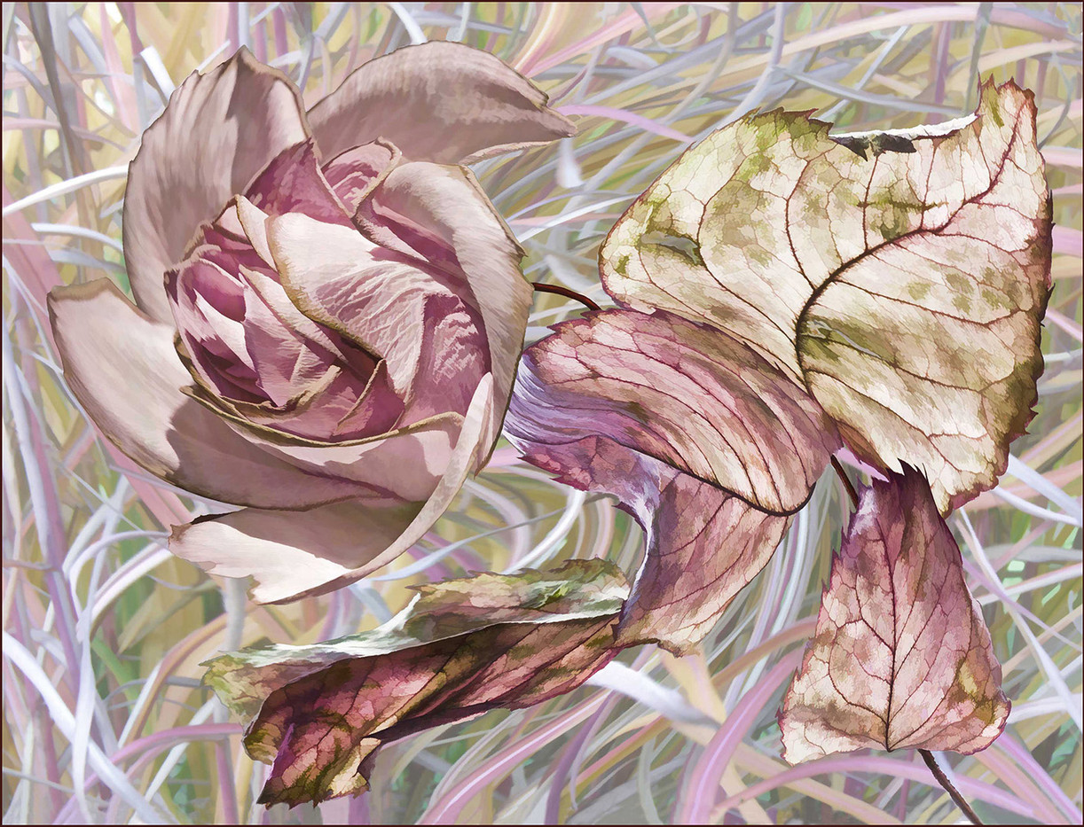GROUP 1 19 THE LAST ROSE OF SUMMER by Jenny Clark