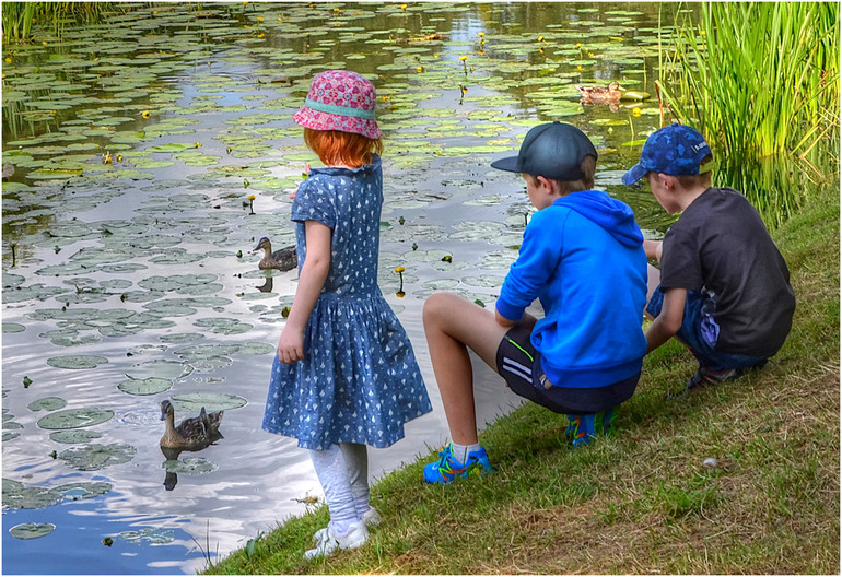15 SUMMER HOLIDAYS AT HEVER by Joan Gow