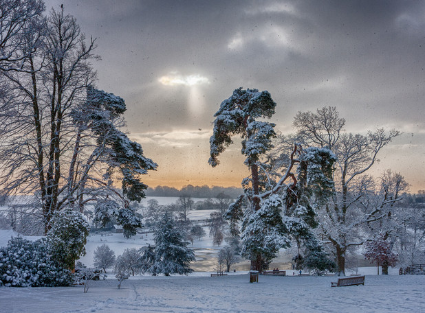 SNOW IN THE PARK by Roger Wates
