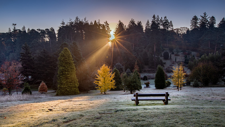 17 BEDGBURY SUNRISE by Philip Easom