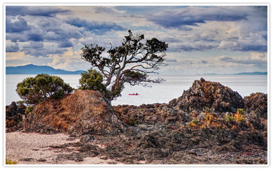 17 COROMANDEL PENINSULA, NEW ZEALAND by Dave Brooker