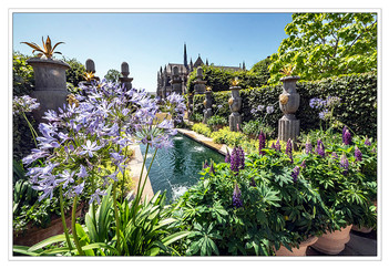 PRINT 12 points CATHEDRAL WATER GARDEN by Mike Shave