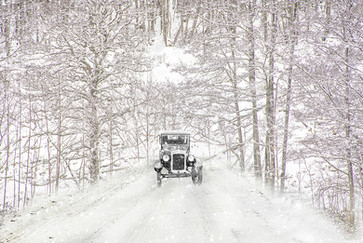 17 WINTER DRIVE by Ann Paine