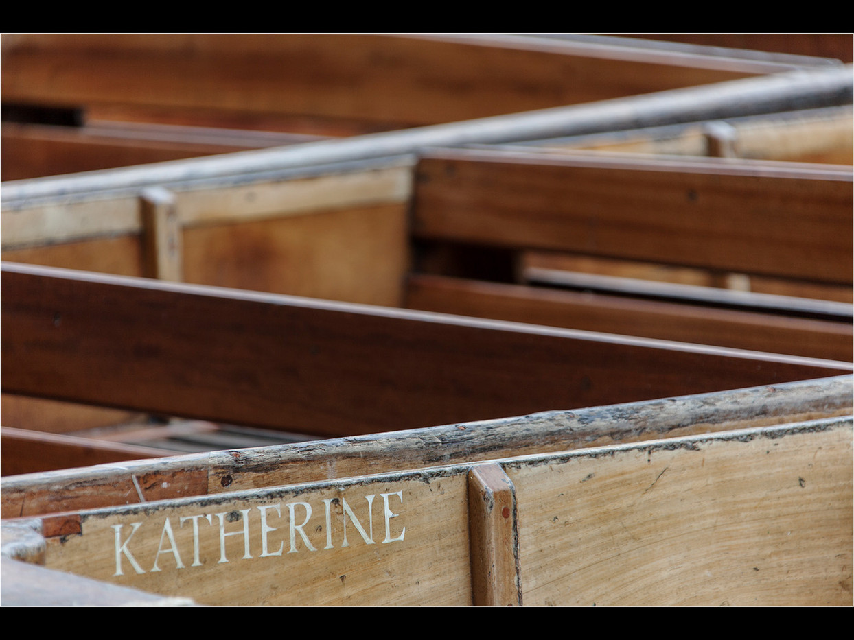 16 KATHERINE by Lol Beacham