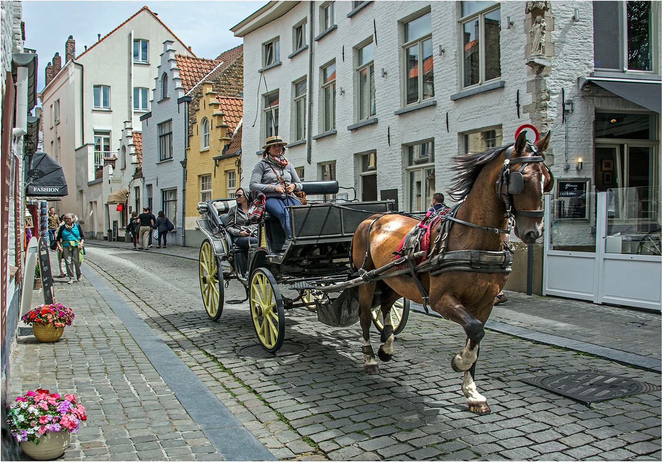 20 HORSE AND CARRIAGE AROUND BRUGES by Graham Bunyan