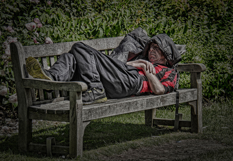 AFTERNOON NAP by Robin Harmsworth