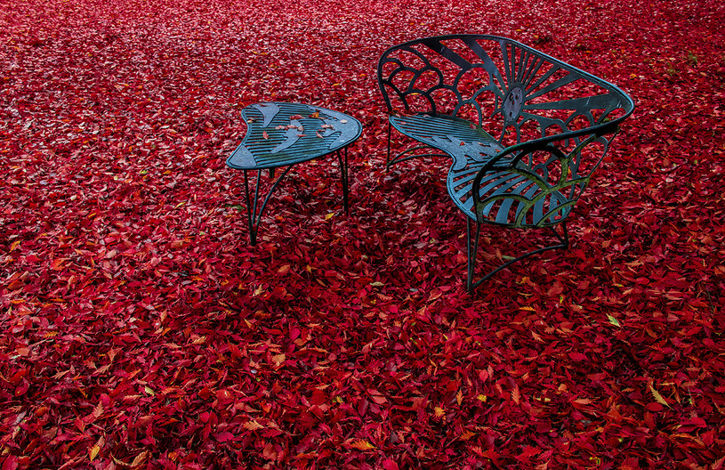 16 THE EMPTY CHAIR by Philip Smithies
