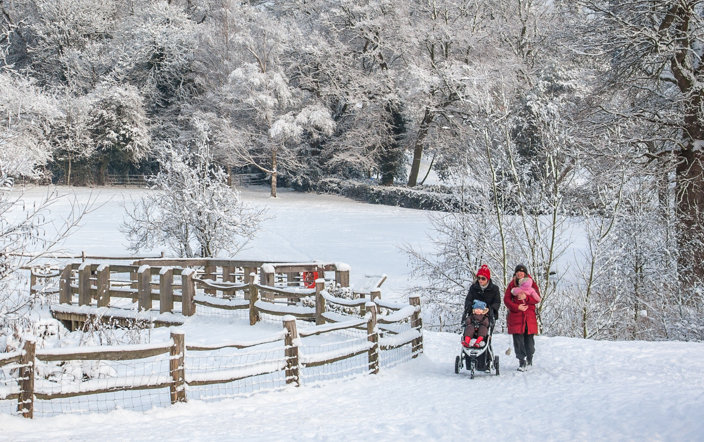 STROLLING IN THE SNOW by Roger Wates