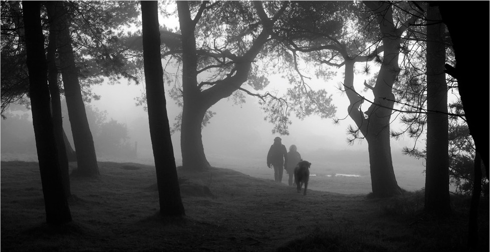 18 WALKING THE DOG by Dave Brooker