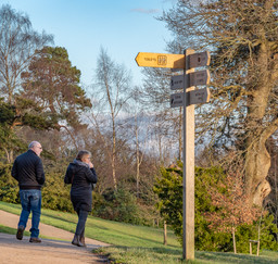 19 WHICH WAY TO GO by Roger Wates