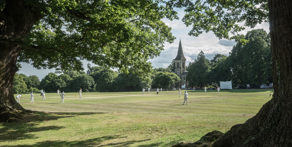 16 CRICKET ON THE COMMON by Richard Brown