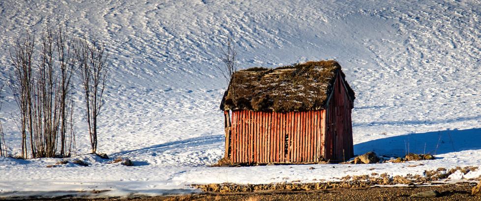 15 NORWEGIAN RED BARN by David Parkinson
