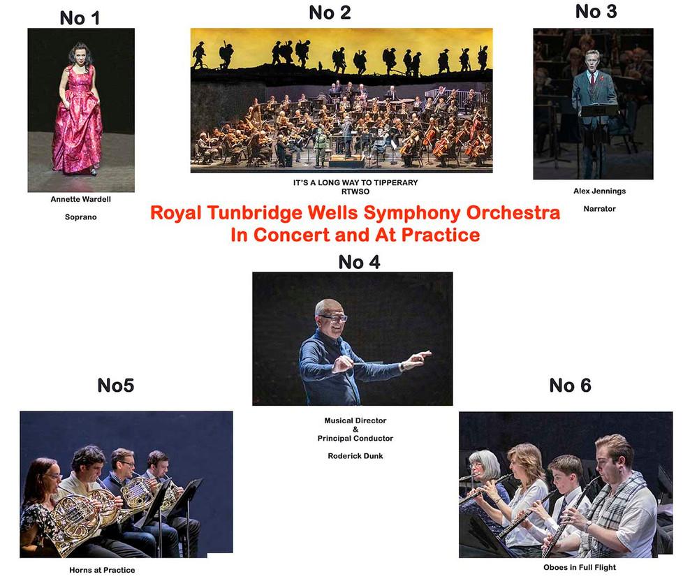 PANEL TUNBRIDGE WELLS SYMPHONY ORCHESTRA by Denys Clarke