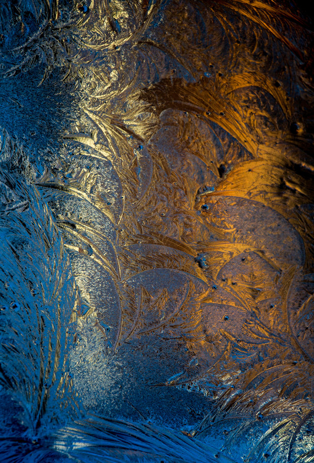 16 ICE GOLD by Richard Gandon