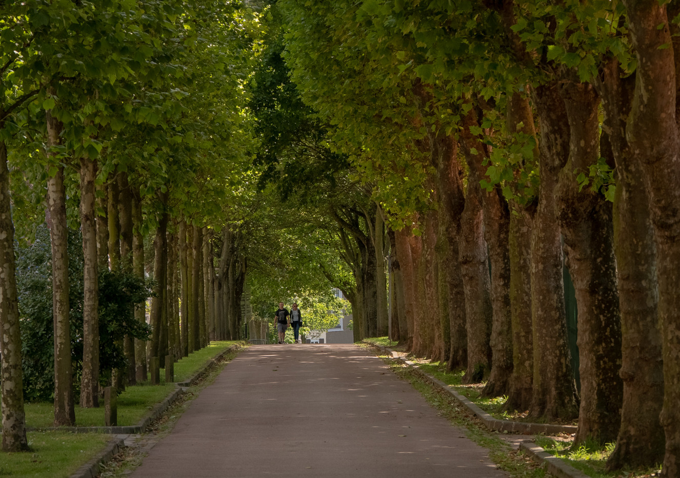 16 A STROLL DOWN A BOULOGNE AVENUE by Roger Wates