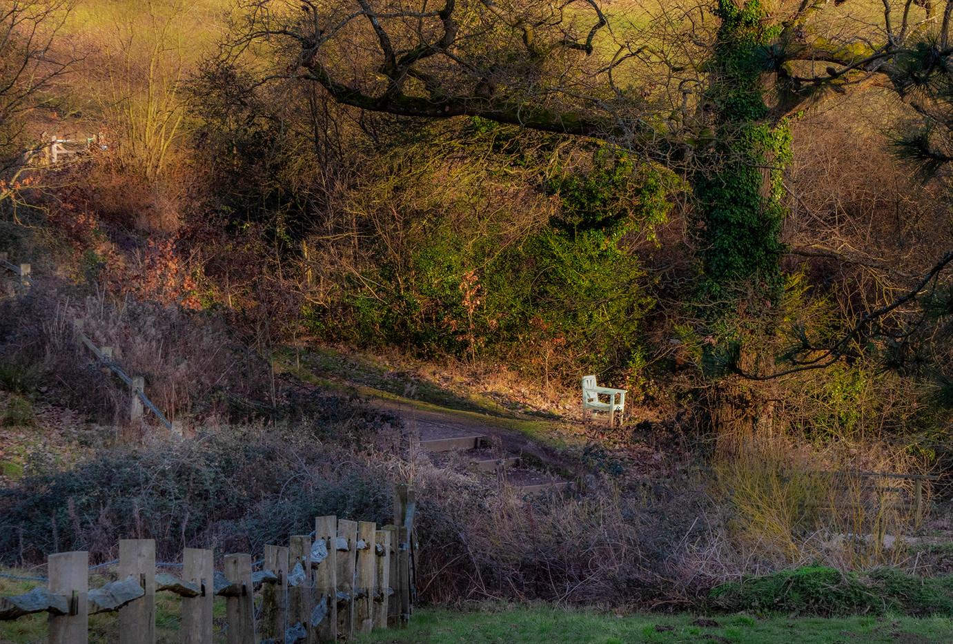 14 SIR WINSTON'S GARDEN (near Chartwell) by Graham Bunyan