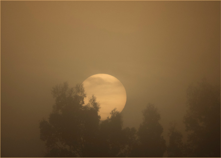 19 SUNRISE IN SEASON OF MISTS AND MELLOW FRUITFULNESS by Colin Burgess