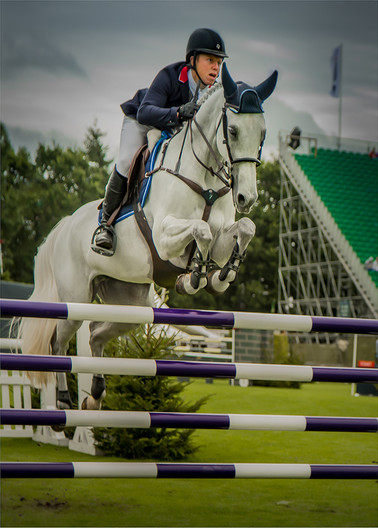 17 A CLEAR ROUND by Sonia Peek