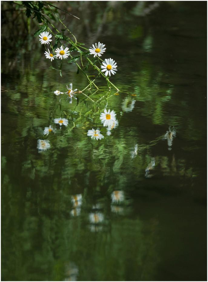 3rd IMPRESSIONIST REFLECTION by Annik Pauwels