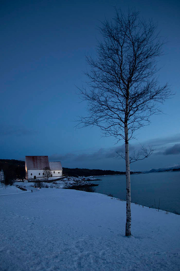 16 DAWN LIGHT ON BIRCH AND MEDIEVAL CHURCH - TRONDENES NORWAY by Penny Skoyles