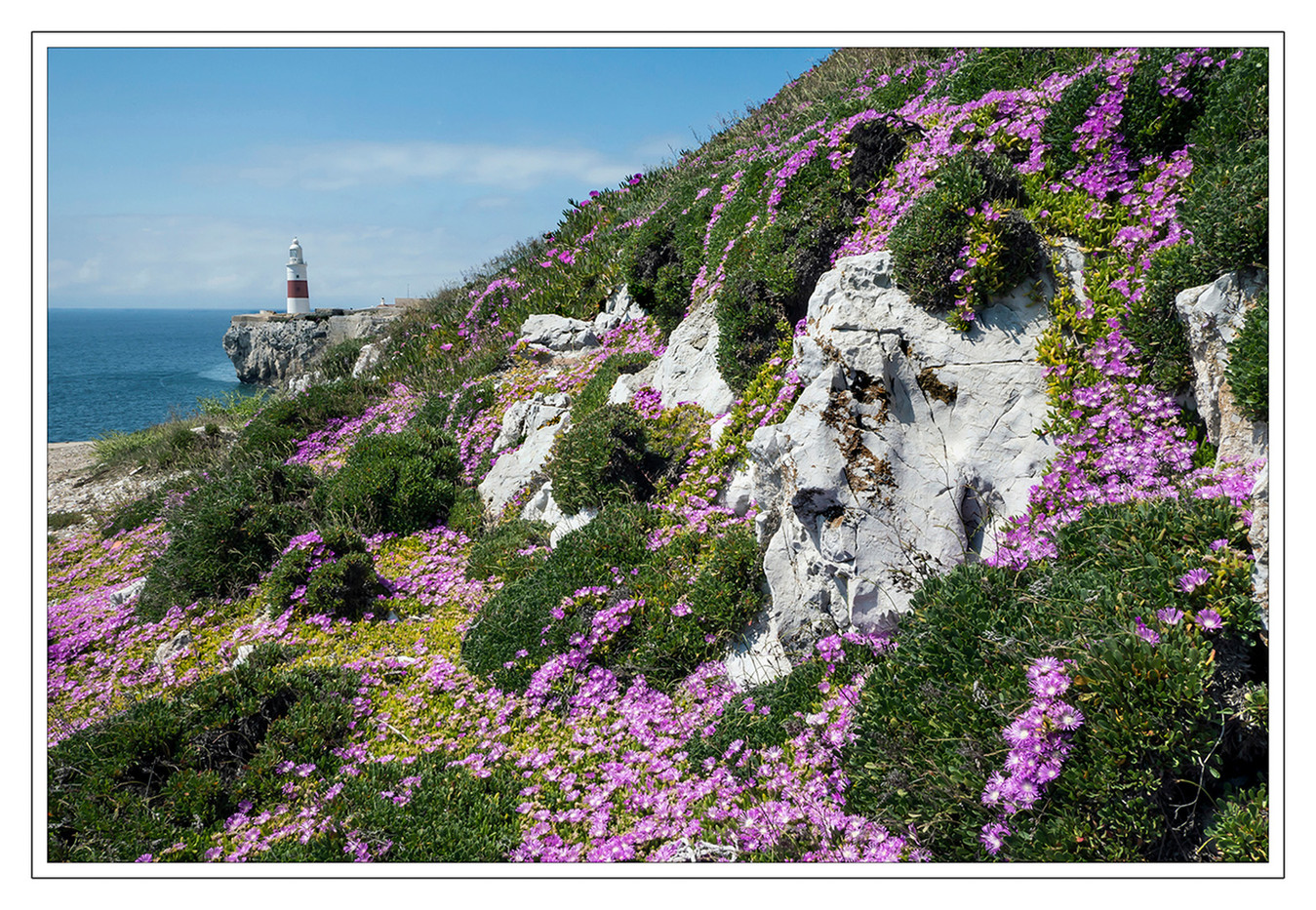 16 FLORA AT EUROPA POINT GIBRALTAR by Mike Shave