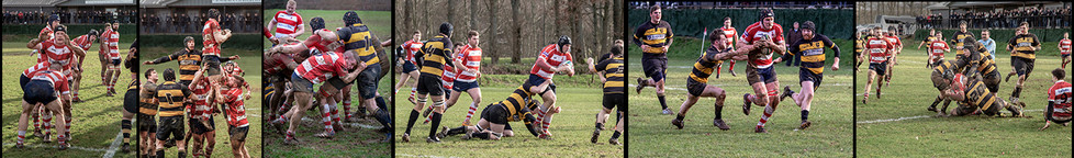 1st BORO GOING WELL by Denys Clarke