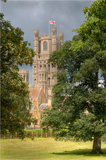 18 ELY CATHEDRAL FROM CHERRY HILL PARK by Dave Brooker