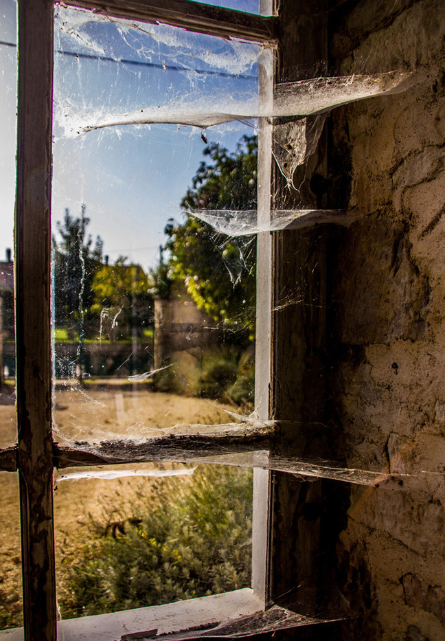GROUP 1 14 COBWEBS AT THE WINDOW by Colin Smith